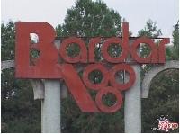 Imaginea grupului Bardar city