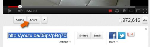 Preluaţi adresa URL a unui clip video de pe Youtube