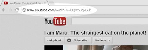 Adresa URL în bara de adrese a Google Chrome